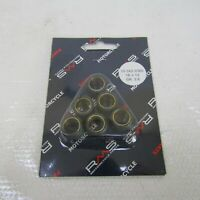 Kit rullini variatore mm 16X13 GRAMMI 3,6 RMS Roller weights