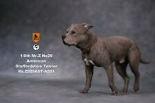 Mr.Z 1/6 American Staffordshire Terrier Dog Pet Figure Animal Decor Model Toys
