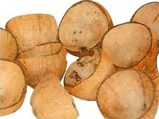 100% ECO-FRIENDLY COCONUT SHELL FREE ENERGY, BUY 5PIECES, GET ONE FREE,NATURAL