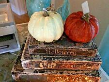 Thanksgiving Fall Wood Look Textured Harvest Orange & White Pumpkin Pair Pier 1