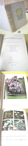 Catalog 1st In Flowers Travelbon.us