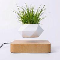 Levitating Air Bonsai Floating Pot Rotation Planters Desk Decor בונסאי עיצוב  盆栽