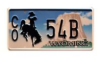 Longmire | Walt's Ford Bronco | CO 54B | STAMPED Replica Prop License Plate