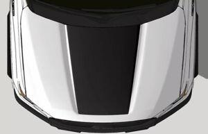 Vinyl Decal Wrap Kit fits 2015-2020 Ford F-150 Truck F150 Hood