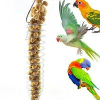 Bird Parrot Food Fruit Basket Millet Feeding Holder Cage Hanging Bird Toy