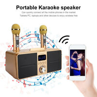 Dual Wireless Microphone Bluetooth Mobile Karaoke Wireless Stereo 30W Speaker 1x
