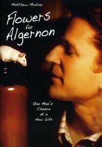 Flowers For Algernon (DVD, 2008)  Matthew Modine    BRAND NEW