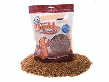 500g Chubby Dried Mealworm High Protein Wild Bird Chicken Food Treat