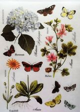 Rice Paper for Decoupage Scrapbook Craft Flowers Butterfly Hydrangea 184