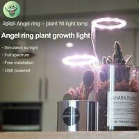 LED Grow Light Hydroponic Full Indoor Succulent Plant Lamp Panel Y9Q7