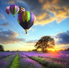 Fathers Day Blank Card - Tranquil Hot Air Balloons & Lavender Field & Freepost