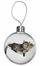 Two Kittens in Hammock Christmas Tree Bauble Decoration Gift, AC-206CB