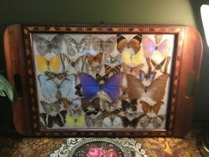 Mesmerizing Antique Vintage Butterfly Inlaid Dresser Tray - c1920s Art Deco