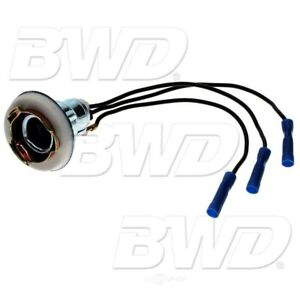 BWD PT61 Tail Lamp Socket, Front