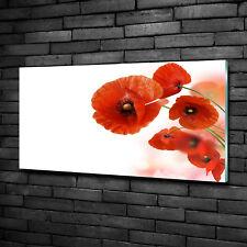 Glas-Bild Wandbilder Druck auf Glas 100x50 Deko Blumen & Pflanzen Mohnblumen