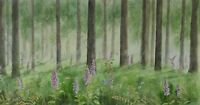 Forest foxgloves  painting  watercolour woodland trees woods landscape floral
