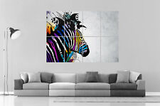 Zebra Colored Zebre Color Home DECO  Wall Art Poster Grand format A0 Large Print