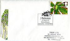 14 de septiembre de 1993 otoño primer día cubierta rowanburn canonbie Dumfries Shs