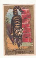 New ListingGreat Atlantic Pacific Tea Co Maltese Cat Rival Scaredy Cat Vict Card c1880s