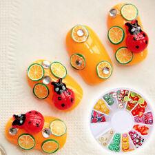Unique Design 3D Fimo Nail Art Wheel Fruit Slices Decoration Nail Tips Manicure