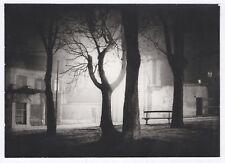 Photo ancienne Lumière Nuit Jeu de lumière Étrange R. Dasché Rouen Vintage Arbre