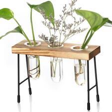 Test Tube Flower Bud Vase Planter Decorative Terrariumin for Cafe 2 Tube