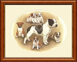 STAFFORDSHIRE BULL TERRIER AND PUPPIES print by Lynn Paterson