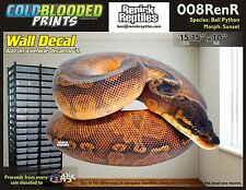 Removeable Wall Decal Snake Ball Python Cold Blooded Prints Sticker 008RenR