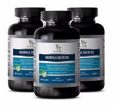 Organic Moringa Capsules MORINGA OLEIFERA EXTRACT Increase of Metabolism 3B