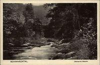 SCHWARZATAL alte AK ~1926 Bachlauf Steinerne Brücke Verlag Bernhardt Schwarzburg