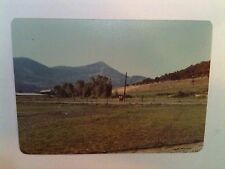 Vintage 70s PHOTO PAONIA,COLORADO TWO PEOPLE ON BEAUTIFUL FARM VEGETABLES