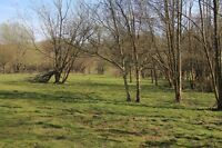 Land for sale in England ~  Ninfield East Sussex Plot 3D9A