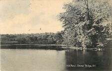 A View Of The Mill Pond, Stone Ridge, New York NY 1908