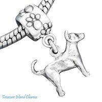 Chihuahua Dog 925 Solid Sterling Silver European Dangle Bead Charm Euro