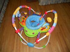 Baby Einstein Music Activity Jumper Swivel Seat Activity Center