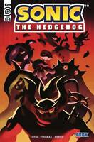 Sonic The Hedgehog #25 1:10 Var RI A (2020 Idw Publishing) Fourdraine Cover