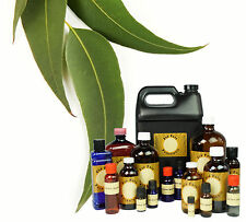 8 oz EUCALYPTUS ROBUSTA ESSENTIAL OIL * DISPENSER TOP!