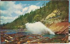 A LOG POND Storing for WOOD Milling SAWMILL Saw  CALIFORNIA Vintage Postcard CA