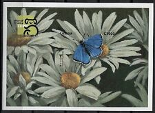 Ghana 1999 MNH Imperf MS, Blue Copper Butterflies, Insects -Z54