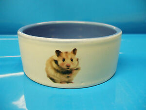 Hamster food and water bowl