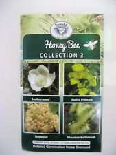 Honey Bee Collection 3