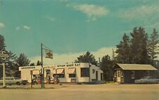 Lake George MN Log Post Office Woodland Store Gas Station Postcard