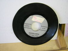 Young Sisters Casanova Brown/My Guy 45 RPM TWIRL
