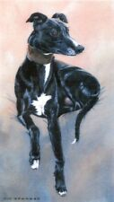 """Limited edition print - Greyhound -  """"Sitting Pretty"""" by the late Vic Granger"""