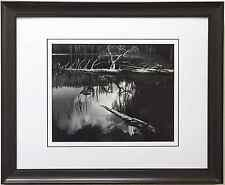"Ansel Adams ""Siesta Lake"" Yosemite Park California CUSTOM FRAMED Litho ART print"