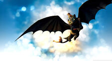 """How to Train Your Dragon 1 2 Wall Movie 40""""x24"""" Poster H04"""