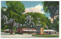 Postcard GA Mossy Oaks Motel Restaurant Eulonia