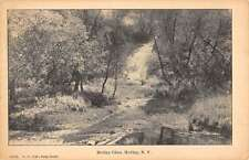 Holley New York Glen Creek Scenic Forest Antique Postcard K21066