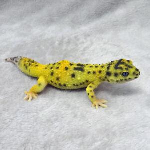Animal Figure; Leopard Gecko High Yellow