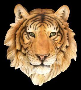 Rilievo Parete - Tigre Testa Rajah - Natura Rosa Königstiger Decorazione Parete